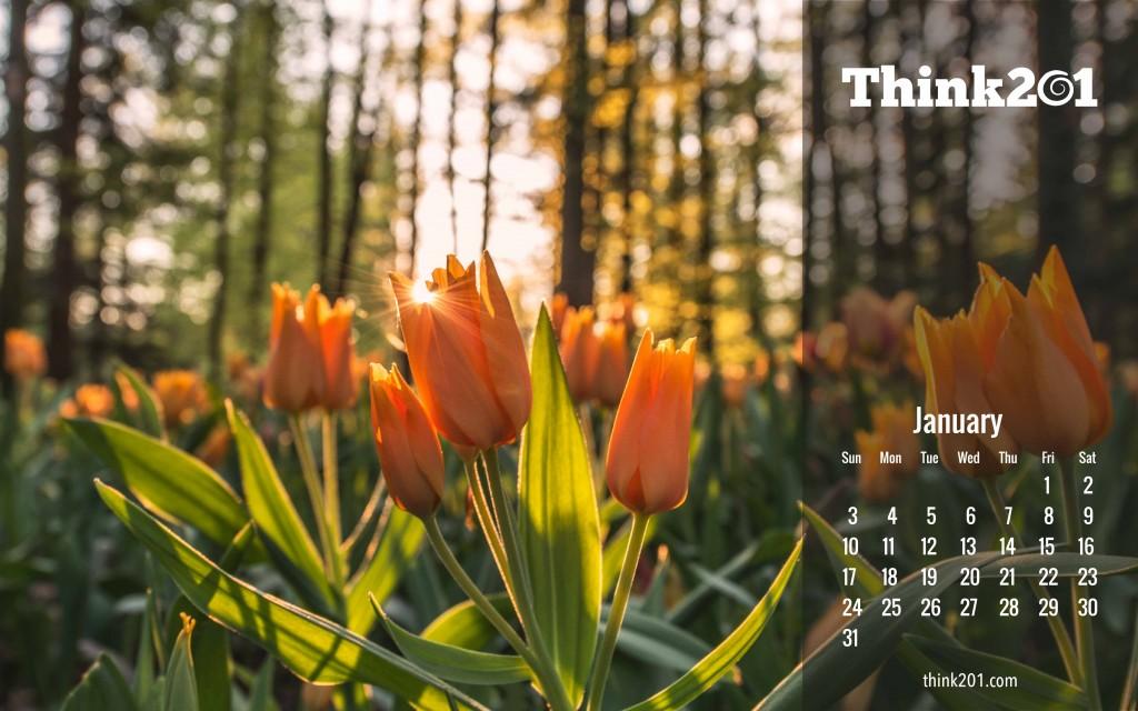 Think201 Jan calendar-06