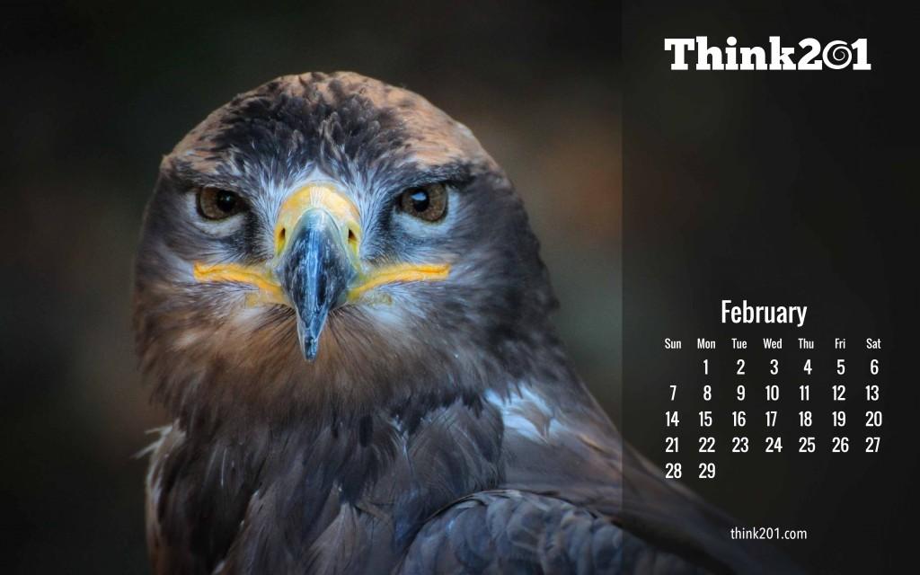 think201-feb7